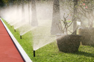 Sprinkler System Kingwood
