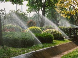 Kingwood sprinkler system